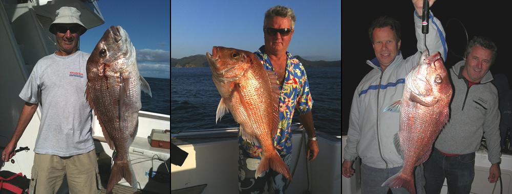 Fishing Supplies NZ